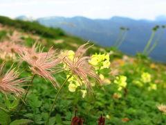 リベンジ白馬!(別)これぞ本編! 百花繚乱の花たち