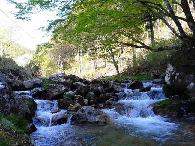 ツーリング<2014春>小渡・矢作ダム・夏焼温泉