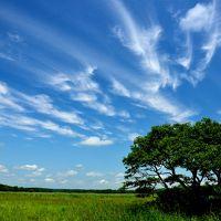 自然を満喫する夏の北海道16日間の旅(16) 釧路湿原巡り ~その2~