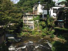 美人の湯 川と山のきれいな東山温泉