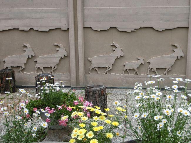 スイス旅行10日間-7ツェルマット街歩き