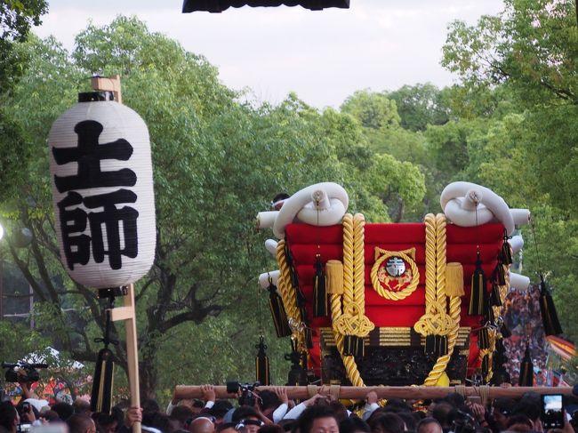 大阪・堺、仁徳天皇陵の近くにある、百舌鳥八幡宮では仲秋の名月に際し、月見祭が行われます。<br /><br />この月見祭(秋祭り)は、氏子百舌鳥9町が、それぞれ大小のふとん太鼓を担いで奉納(境内を練り歩く)します。<br /><br />近年お祭りの日を土日にあわせるようになり、今年は仲秋の名月が9月8日の月曜日にあたることから、9月13日、14日にとり行われます。<br /><br />そこで、13日のふとん太鼓の宮入に行ってきました。<br /><br />【写真は、石段を上るふとん太鼓です。】