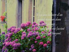 """とことん自由に、あくまでも優雅にフランスJuilletの扉 Vol.3絵本の挿絵のように佇むアルザスワイン街道の村""""リボ-ヴィレ""""&""""リクヴィル"""""""