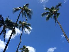 ハワイの風を感じたくて。別荘気分を味わいました。パート4