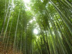 夏の終わりの京都旅行