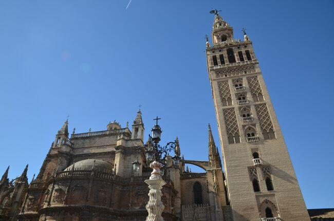 スペインは紀元前3世紀に古代ローマの一部となった地で、水道橋や橋などの遺跡やローマ式の街の痕跡が各地に残されています。そうした遺跡をこの目で見るためにスペインを訪れました。<br />ローマから遠く離れたこの地にもイタリアと同じような建築物があり、ローマと同じレベルの高度な都市生活が営まれていたことが実感できました。<br /><br />☆?★?☆?★?☆?★?☆?★?☆?★?<br />【4】セビリアと近郊のローマ都市イタリカ<br /> セビリアは大西洋につながるグアダルキビール川の川港都市で、新大陸との貿易で大いに栄えた大都市です。街の中央にある大聖堂には、モスクを改造したヒラルダの塔や巨大な祭壇など、繁栄を物語る建造物がそびえ立っています。<br /> セビリア観光の後は、近郊のサンティ・ポンセを訪れます。ここはかつてローマ帝国の重要な都市であったイタリカのあったところですが、その後放棄されて今は遺跡しか残っていません。隣のセビリアの繁栄ぶりと対象的な光景です。<br />☆?★?☆?★?☆?★?☆?★?☆?★?<br /><br /> 1 いきなりハイライトのセゴビア水道橋<br /> 2 メリダでローマ遺跡三昧<br /> 3 古代ローマ橋・アルカンタラ橋とちょっとだけポルトガル<br />&gt;4 セビリアと近郊のローマ都市イタリカ<br /> 5 コルドバのメスキータとローマ橋<br /> 6 アルハンブラ宮殿とその敷地内のパラドール(グラナダ)<br /> 7 ロンダと白い村カサレス<br /> 8 ラ・マンチャの風車は期待以上<br /> 9 トレドの街を臨むパラドール