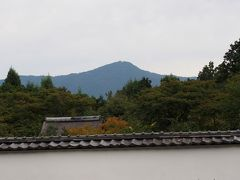 京都へ、建勲神社、大徳寺、正伝寺、今宮神社