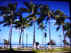 常夏の島ハワイで観光とショッピングを楽しみましょう
