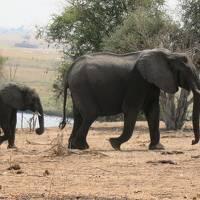 南アフリカ絶景の旅