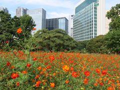 えきぽで散策@新橋駅 ~爽やかな秋空と大名庭園編~