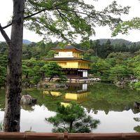 関西旅行(大阪・京都・USJ)2日目 京都観光~USJへ