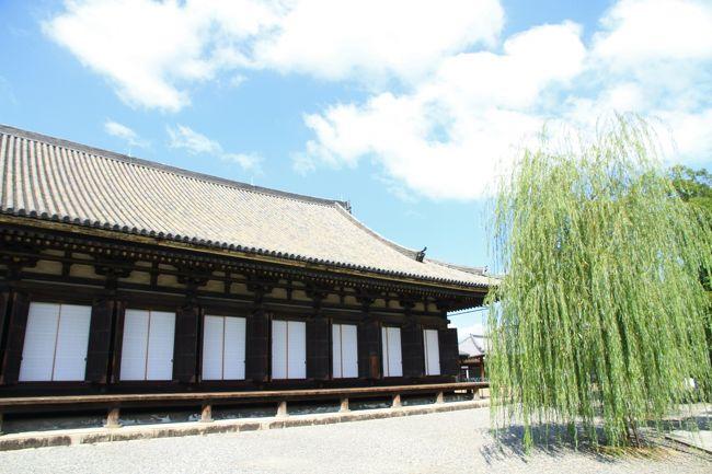 三十三間堂、豊国神社、方広寺、智積院、大徳寺。<br />京都市内のお寺を巡ってきました。<br /><br />三十三間堂<br />本堂内陣の柱間が33あることから命名されました。<br />正式名は蓮華王院で、平安時代、後白河上皇の勅願により建立され、<br />国宝の千手観音菩薩坐像一体を中心に左右500体ずつ前1001体の千手観音菩薩を祀っています。<br />1001体もの観音菩薩像。思わず立ちつくし、見入ってしまうほどです。<br />感動的です。<br />前面に並ぶ28部衆、風神、雷神像も素晴らしいです。