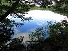 再び八ヶ岳(1) 前哨戦は「にゅう」! 白駒池とおまけの高見石
