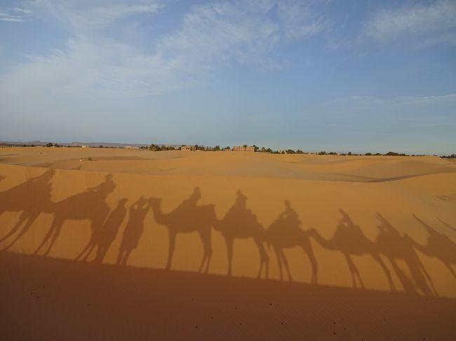 NO.7/11 カタール航空ビジネスクラス利用/砂漠のホテルに泊まる モロッコ世界遺産の旅11日間