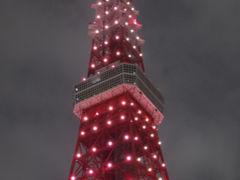 ピンクリボンフェスティバル2014 ピンクライトアップ東京タワー[2014/10/04(土)]