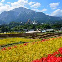 (思いがけず)2014・秋風を感じる小さな旅へ【1】〜秩父市街の「午年総開帳」観音霊場巡り&豊穣の棚田に日本の原風景を想う〜