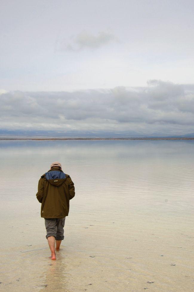 15日、茶卡塩湖の続きです♪<br /><br />人が塩湖の中へ入って行く様子を見付け、不思議に思いながら次男坊に尋ねると、遠浅ので平坦なので、かなりの所まで行けるそうです。<br />そこで、彼に代表で入って貰う事にしました♪<br />来る時に降っていた雨もピタッと止み、天気は次第に回復傾向なのですが、曇っているお陰で、少し変わった写真が撮れた気がします。<br />「湖面に浮かぶ人の姿」って感じの、この天候の光線だからこそ捉えられた風景でした。