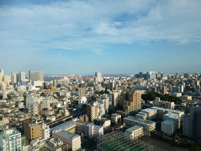 東京マリオットホテルエグゼクティブフロアに宿泊した際の滞在記です。部屋はエグゼクティブデラックスツインでした。2013年にマリオットとしてリニューアルオープンしたそうです。<br /><br />御殿山にありもともと高台であることに加えて部屋の正面に高い建物がなかったために、眺望を楽しむこともできました。また、エグゼクティブラウンジも寛ぐことができました。