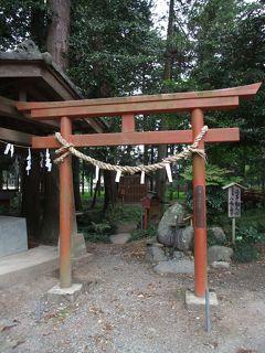 栃木1日目 大神神社(室の八嶋)