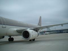 中部空港からアシアナ機に乗りました