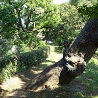 『35mmでいく東京散歩』 千代田区・皇居周辺 散歩と呼ぶにはあまりにも広大
