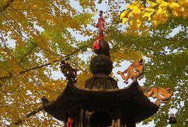 2014秋、中国旅行記24(14):10月17日(4):金州、大黒山響水寺、瑤琴洞、南山日露戦争遺址
