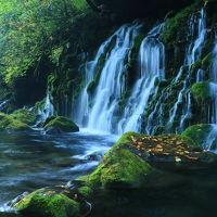 美人写真家先生と行く♪紅葉見頃の鳥海山撮影ツアー【月山・鳥海山・元滝伏流水・獅子ヶ鼻湿原】