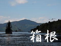 「東海道五拾三次」を歩く  十一、箱根 ~ 三島