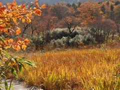 今が紅葉の盛り「土湯峠湿原」を散策(福島)