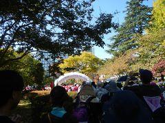仙台四季折々☆秋晴れの1日「ピンクリボンフェスティバルスマイルウォーク」♪