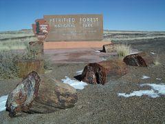 2008年 アメリカ南西部ドライブ(8 days) =Day 3= ~隕石と化石の森を満喫~