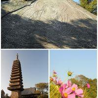 奈良旅のはずが。。。京都南山城を彷徨うことに(>_<)