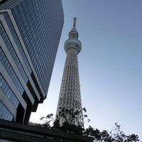ANAボーイング787-9で行く東京・横浜旅行Part4 渋谷・東京スカイツリー編