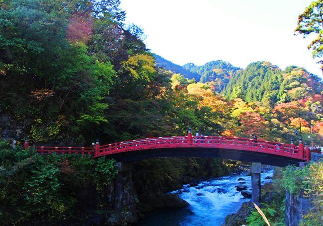 """都心部でも少しずつ秋の気配が感じられるようになってきた10月下旬、友人と共に旅に出た。 <br />旅先は、世界遺産として名高い日光。 <br />旅の目的は、""""秋の森林浴と美味しい湯葉料理""""。 <br /><br />でも、実はコレは表向きの理由。 <br />""""表""""があるからには、""""裏""""もある。 <br /><br />今回の旅の裏の目的は、ちょっとミステリアス。 <br />ソレは、ある都市伝説の足跡を辿る旅…。 <br /><br />☆★☆★☆★☆★☆★☆★☆★☆★☆★☆★☆★☆★☆★☆★☆★☆★☆★☆★☆★☆★<br />現代から150年ほど遡って、江戸時代の終わり。 <br />徳川幕府は200年に渡る長き統治に疲弊し、国策であった鎖国は崩れ、欧米の文化の波が否応なく日本に押し寄せ、時代は江戸から明治へと移り変わっていった頃。 <br />日本は大きな変換期を迎え、人々は欧米の新しい風を受け入れ、巨万の富を持つと云われていた徳川幕府の存在はひっそりと忘れ去られて、時代の闇に呑みこまれていった。 <br /><br />しかし、徳川一族は密かに彼らの命運をある唄に託していた… <br />その唄とは、わらべ歌 ♪""""かごめ かごめ""""。 <br /><br />かごめかごめ  <br />籠の中の鳥は  <br />いついつ出やる  <br />夜明けの晩に <br />鶴と亀が統べった  <br />後ろの正面だぁれ <br /><br />この唄が編纂されたのは、1800年代初頭の頃。 <br />まだ、徳川の行く末が、吉と出るか凶とでるかは、明らかにはなっていなかった頃。 <br />意味が通るようで、文章としては不完全なわらべ歌""""かごめ かごめ""""。 <br />その唄が示すモノは何なのか。 <br /><br />一説によると、徳川の埋蔵金の在り処がこの唄に秘められていると云う…<br /><br />☆★☆★☆★☆★☆★☆★☆★☆★☆★☆★☆★☆★☆★☆★☆★☆★☆★☆★☆★☆★<br />埋蔵金を探せ!/日光東照宮:http://4travel.jp/travelogue/10945829<br />パワースポット満載!One day Trip:http://4travel.jp/travelogue/10946504"""