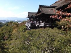 20年ぶりの清水寺はもう紅葉の始まり??こんなに早かったけ?