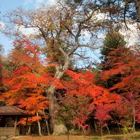 栃木県日光市湯西川温泉と三依地区の紅葉が見頃でした。その1