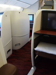 今年3度目の一時帰国:「JALのファーストクラスでやられちまった」編(ブラジル-NY-成田)