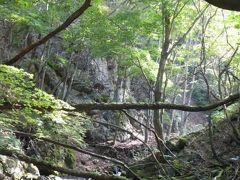 秋の扉温泉と別所温泉の旅♪ Vol9(第2日目午前) ☆扉温泉「明神館」:朝の優雅な散歩♪ ガゼボコースを歩く♪