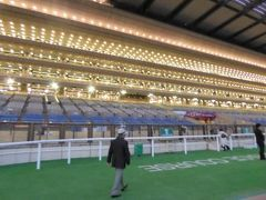 東京中央競馬を優雅に楽しむ♪
