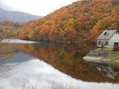 秋の日帰りドライブ♪紅葉と新そば楽しんできました。