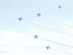 ゆるかわブルーインパルス☆入間基地航空祭2014