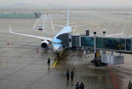 2014秋、韓国旅行記28(22:本文完):10月31日:ソウル、早朝の帰国、インチョン国際空港