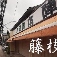 「東海道五拾三次」を歩く  二十三、藤枝 〜 島田