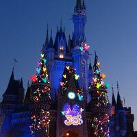 HAPPY NEW YEAR! 特典航空券で初正月ディズニー☆(2日目 TDL)