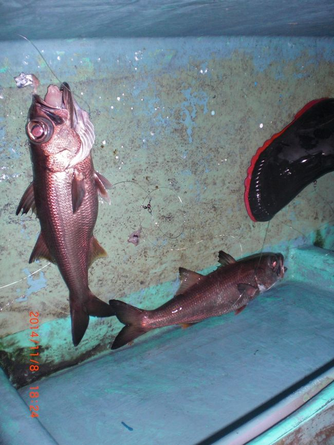 台風台風でなかなか出船できませんでした<br />オニカサゴ本格化<br />夜ムツ好調<br />深場の魚が始まりました<br />鍋〜最高!