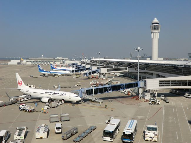 皆様、こんにちは。<br />オーヤシクタンでございます。<br />楽しい旅も最終日になりました。<br />今日は、知多半島中央部の古い街並みと新しく開発された地域を巡ります。<br /><br />表紙写真‥中日本の空の玄関口…中部国際空港(セントレア)。<br />―――――――――――――――――<br />旅行期日‥平成26年11月5日(水)~7日(金) 2泊3日。<br /><br />11月7日(金) 第3日目 (晴れ)<br /><br />※半田市内散策(8:00~9:00)<br />↓<br />★知多バス:中部国際空港行<br />知多半田駅9:13→INAXライブミュージアム前9:33<br />↓<br />※常滑市内散策(9:35~11:00)<br />↓<br />★名古屋鉄道:空港特急 中部国際空港行<br />常滑11:02→中部国際空港11:06<br />↓<br />※セントレア見学(11:10~14:10)<br />↓<br />★名古屋鉄道:空港特急 名鉄岐阜行<br />中部国際空港14:17→名鉄名古屋14:54<br />↓<br />★東海道新幹線:こだま664号<br />名古屋15:29→新横浜17:57<br /><br />〔紀行文〕<br />ついに迎えた最終日。<br />今日はどこに行こうか…<br />ホテルがあるのは、知多半島中央部の半田と言う街である。<br />実は15年ほどに前、半田に来た事があった。<br />味ぽんで有名なミツカン酢の本社があり、酢の博物館を見学した事だけがおぼろげに記憶に残っている。<br />昨日、知多半田駅で観光マップを貰って来た。<br />半田は江戸時代から醸造が盛んだった所で、マップを見ると、今も当時の面影を残す場所がたくさんあるようだ。<br />駅に向かう途中に散策をすることにしよう。<br />昔、半田運河からは、酒や酢などが運び出されており、周辺には黒板囲いの醸造蔵がたくさんある。<br />この街のイメージカラーは何か?…と聞かれたら大半の人は「黒」と答えるだろうと思うくらい、みごとに黒い。<br />早歩きで巡って1時間。<br />正直言って時間がもう少し欲しい所だった。<br /><br />知多半島の東側に位置する半田から、その反対側‥西側に位置するのが、やきもので有名な街‥常滑である。<br />路線バスに乗り、20分ほどで常滑市内にある、INAXライブミュージアム前に着いた。<br />常滑には、衛生陶器メーカー大手のINAX(現在のLIXIL)があり、便器やタイルなどの生産を行っている。<br />そこにINAXライブミュージアムと称して敷地内に、世界のタイル博物館や窯のある広場.資料館などがあり、土とやきものの魅力に出会うことができる。<br />ブラブラしていたら、朝のバイキングで元をとってやろうと、大食いしたのがいけなかったのか…<br />お腹の具合が悪くなってきた。<br />グルル…と腹が下ってきている。<br />事態は深刻な状況になった。<br />しかし、神(紙)は我を見捨てなかった。<br />なんと、INAXライブミュージアムの隅に、トイレパークと言うトイレが主役の、こじんまりとした公園があったのだ。<br />個室にかけ込むと、そこは川のせせらぎを聞きながら用が足せる、天国のような癒しの空間であり、 地獄から天国とはこの事を言うんだな‥と実感!<br />さすが、便器メーカーのINAX !‥と心の底から感謝した 。<br /><br />身も心もスッキリして、常滑の中心街へ向かった。<br />常滑はやきものと海運で栄えた街である。<br />時代を感じさせる黒色の日本家屋が並ぶ通りを散策し、やきもの散歩道へと入っていき、狭い路地をゆくと、今は使われなくなった登窯や、レンガ造りの煙突が並ぶ風景が目に入り、街の雰囲気が素朴な感じがした。<br /><br />半田、常滑‥と、昔からの懐かしい町並みを見た後は、新しい街‥中部国際空港(セントレア)へ…<br />空港ターミナルのスカイデッキに立つと、これから国内外各地に向かう航空機が並んでいて、飛行機で何処かに行きたくなってしまいそうだ。<br />昨日、フェリーから空港を眺めたが、今日は空港から海を眺めた。<br />天気はいいのだが、冷たい強い風がデッキに吹きつけて寒い。<br />歩いて汗をかき、冷たい風にさらされた体を癒そうと向かった先は…<br />`風の湯´と言う空港内の温浴施設。<br />空港に来た最大の目的は風呂である。<br />今まで、色々な旅をして来たが、お風呂目当てに空港に来たのは、今回が初めて
