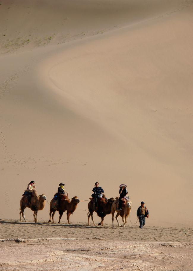 18日の続きです。<br /><br />約束の16時になりましたので、またタクシー2台に分乗して、月牙泉のある鳴沙山へ向かいます。<br />最初は駱駝に乗って鳴沙山を登って眺望を楽しんだ後、日が暮れる前に下山して、月牙泉へ向かいます。<br /><br />では、先ずは駱駝隊で鳴沙山へ向かう編【前編】からどうぞ。