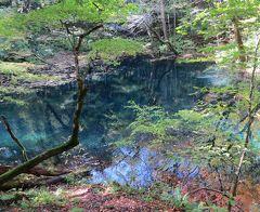 津軽出羽の紅葉・・白神の湖沼群十二湖と千畳敷をめぐります。