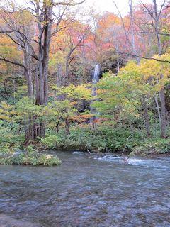 津軽出羽の紅葉・・十和田湖と奥入瀬渓流をめぐります。