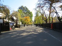津軽出羽の紅葉・・佐竹北家の武家屋敷を満喫、角館をめぐります。